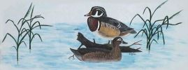 Wood Ducks by Bill Balmer